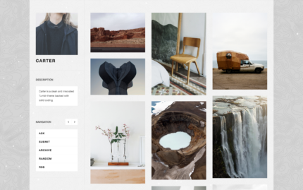 Tumblr theme Carter - Remarkably Tidy Sidebar Theme