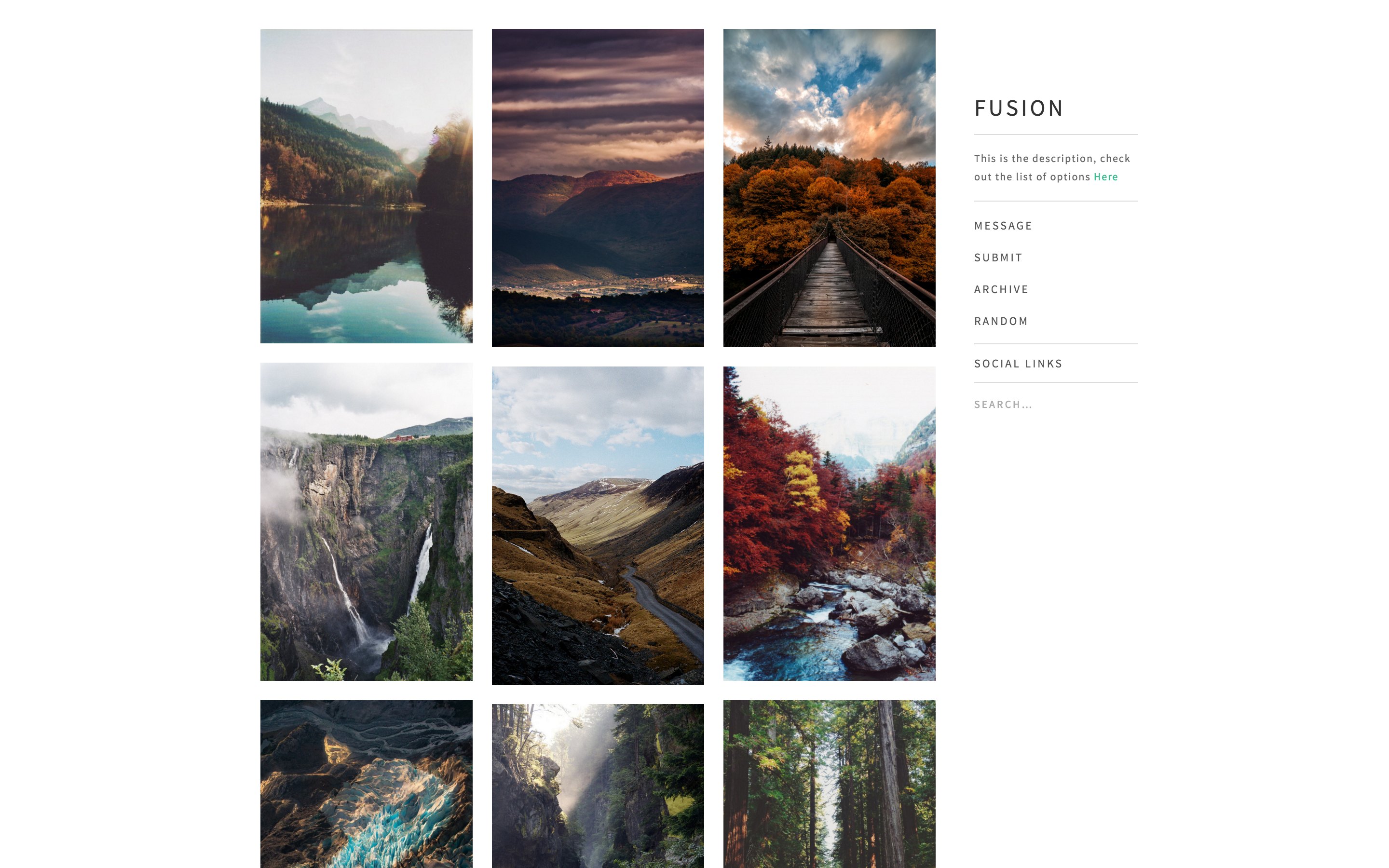 Tumblr theme Fusion - Minimalism meets Characteristic